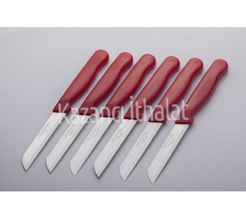 Simli Meyve Bıçağı Kırmızı Tırtıklı